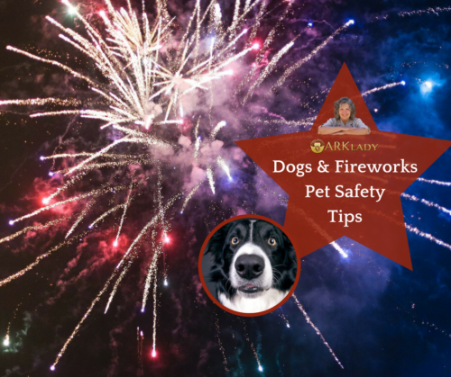 Dogs & Fireworks Pet Safety Tips AskARKlady