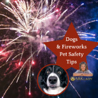 Pet Care Tips During Fireworks