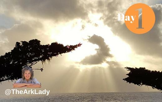 DianaLGuerrero -@TheArkLady #DivinelyOrchastratedLife Day 1