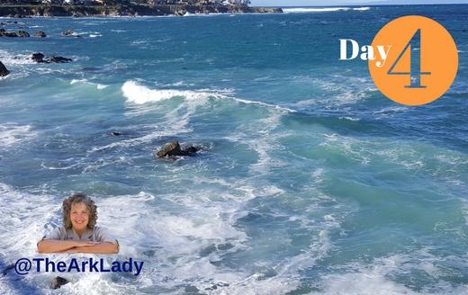 DianaLGuerrero -@TheArkLady #DivinelyOrchastratedLife Day 4